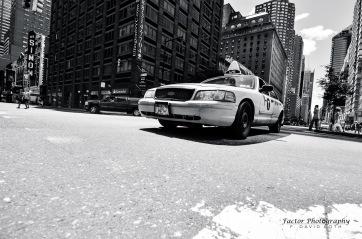 NY cab2